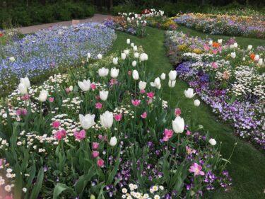 春の里山ガーデンフェスタはパステルカラーの花畑